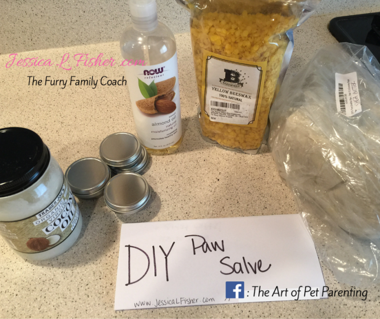 diy paw salve dog cat