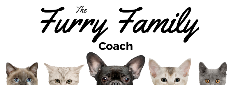 online dog training positive methods furry family coach