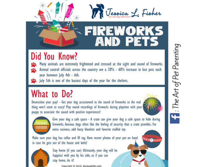 keep your pets safe this fourth of july