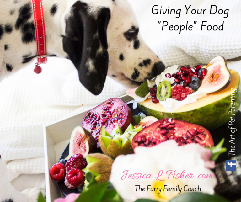 Giving Your Dog People Food