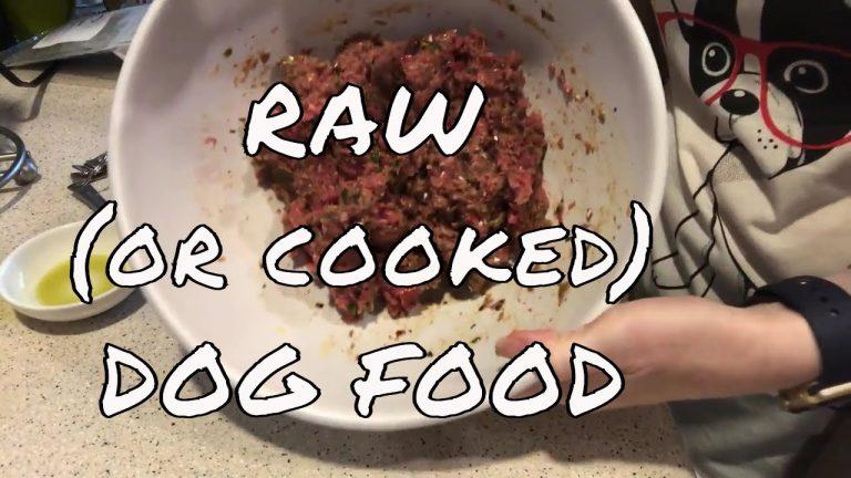 balanced raw dog food recipe