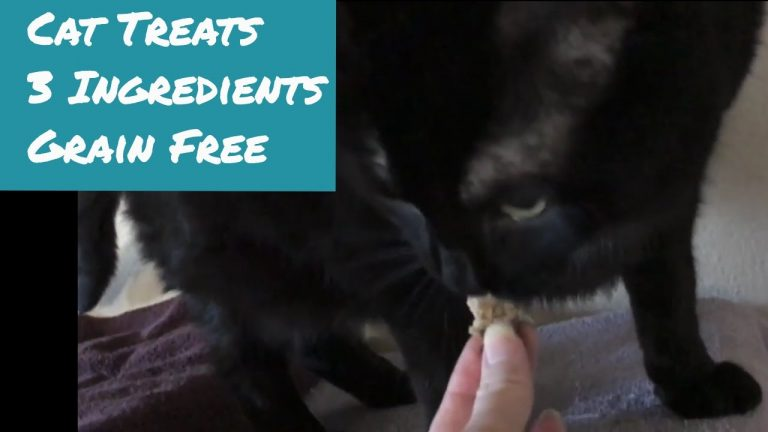 grain free cat treats 3 ingredients