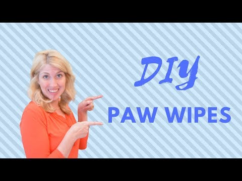 DIY Paw Wipes