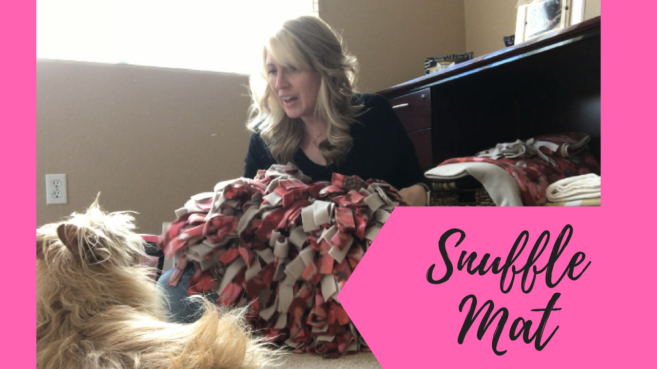 How To Make A Snuffle Mat For Your Dog Canine Enrichment