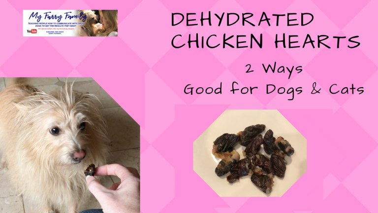 Dehydrated Chicken Hearts Healthy Dog Snack Cat Snack Homemade