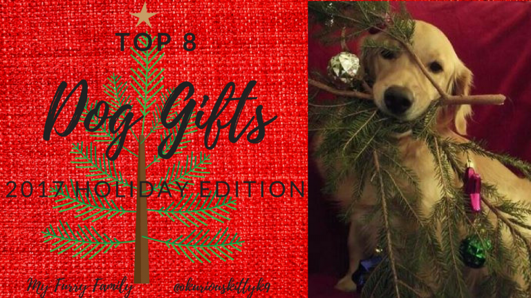 what to get my dog for Christmas 2017