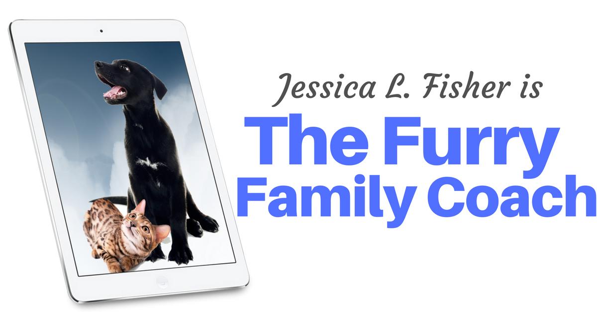 the furry family coach