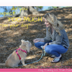 are you expect too much from your dog