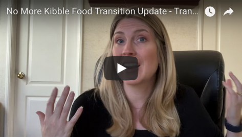 Raw Food Transition Update – No More Kibble
