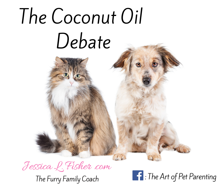 How healthy is coconut oil