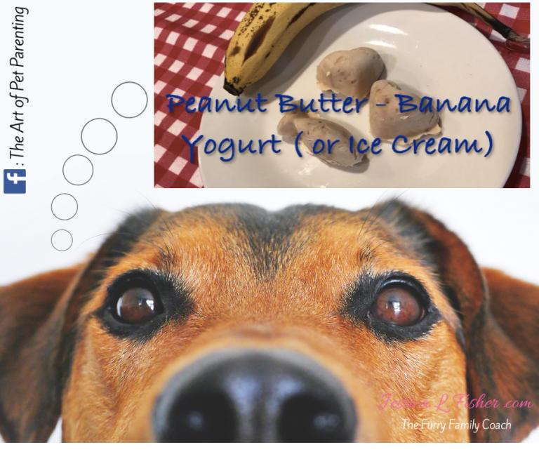 homemade peanut butter banana yogurt