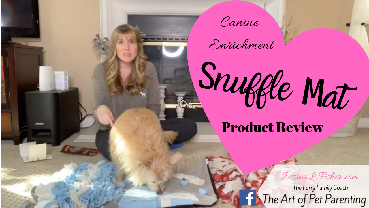 Snuffle Mat Review Canine Enrichment