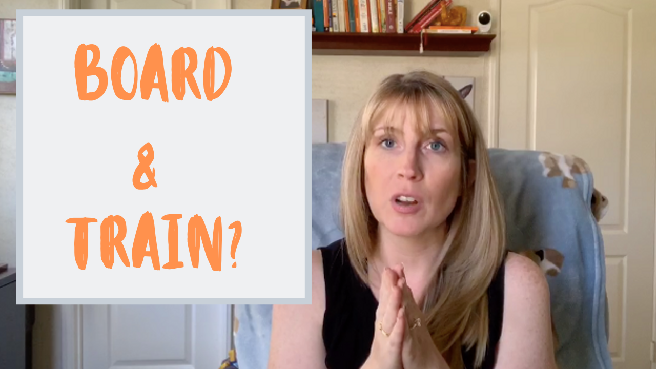 Should You Board & Train Your Dog?