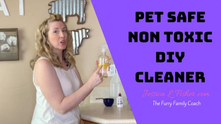 Pet Safe Non Toxic DIY Cleaner