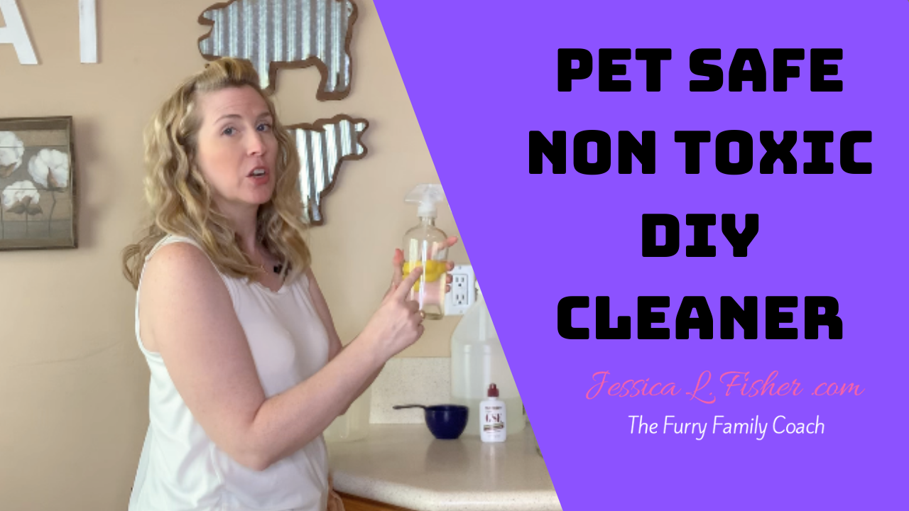 Homemade Cleaner Non-Toxic Pet Safe