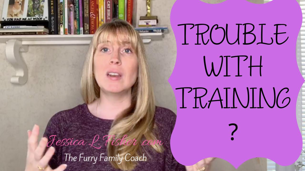 Having Trouble Training Your Dog?