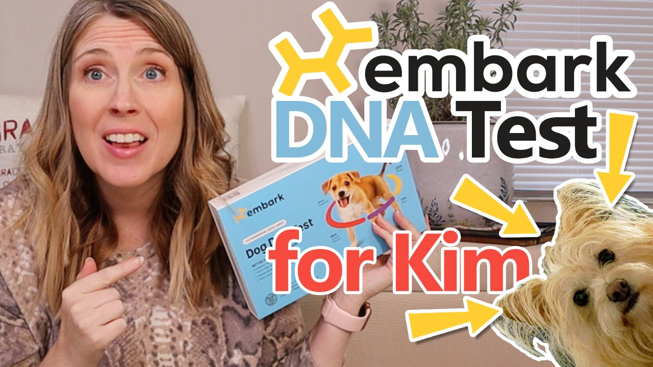 Kimberly's Embark DNA Results Are In!